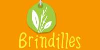logo Brindilles
